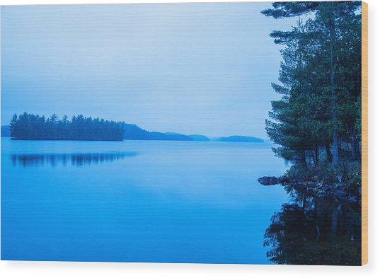 Wood Print featuring the photograph Into The Blue by Rosemary Legge