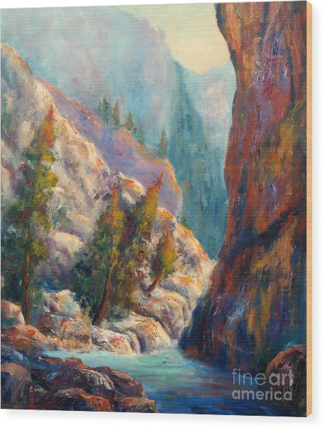 Into The Canyon Wood Print