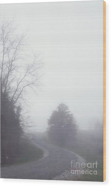 Into The Fog Wood Print by Kay Pickens