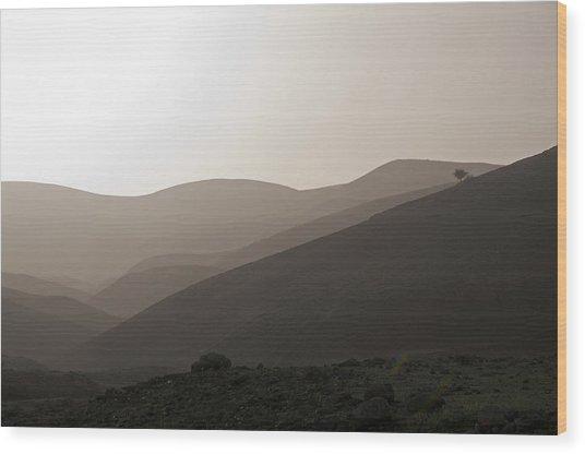 Into The Israel Desert - 1 Wood Print