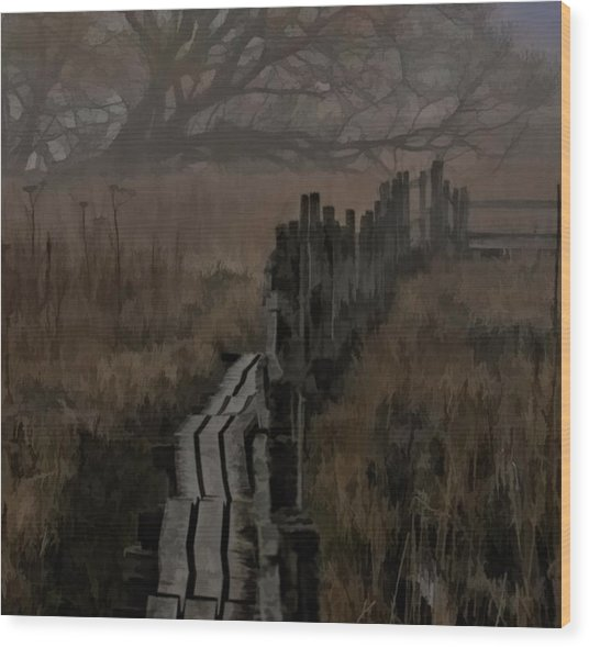 Into The Unknown  By Leif Sohlman Wood Print