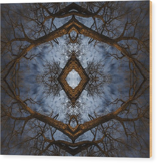 Intricate Eye In The Sky Wood Print