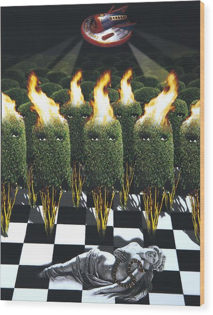 Invasion Of The Alien Bushes Wood Print by Larry Butterworth