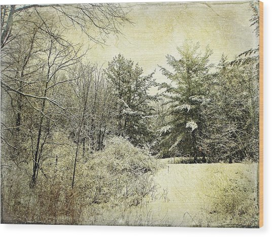 Invitation To Winter  Wood Print by Dianne  Lacourciere