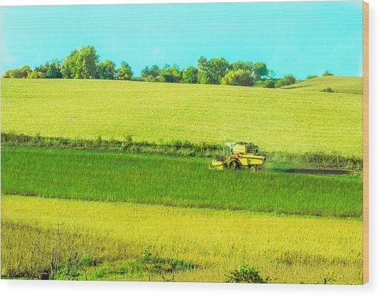 Iowa Farm Land #3 Wood Print