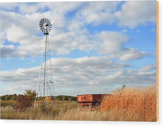 Iowa Windmill Wood Print by Diane Lent
