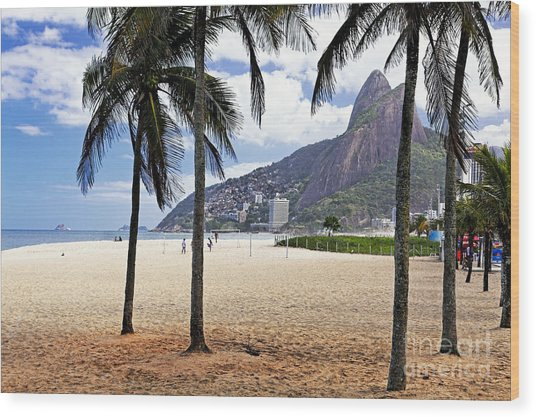 Ipanema Beach Palm Trees Wood Print by George Oze