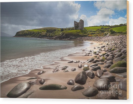 Ireland - Castle Minard Wood Print
