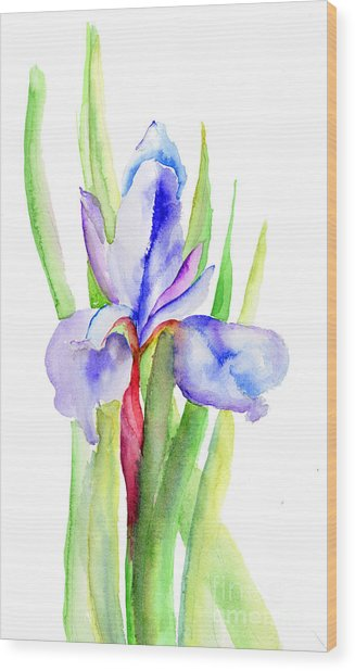 Iris Flowers Wood Print