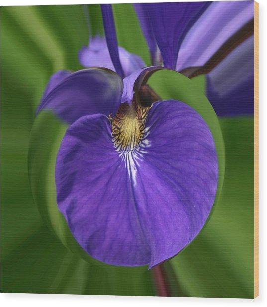 Iris Leaf Wood Print