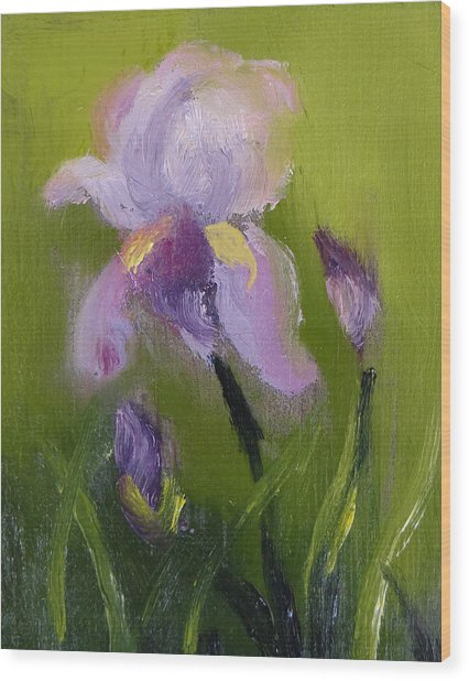 Iris Miniature Wood Print