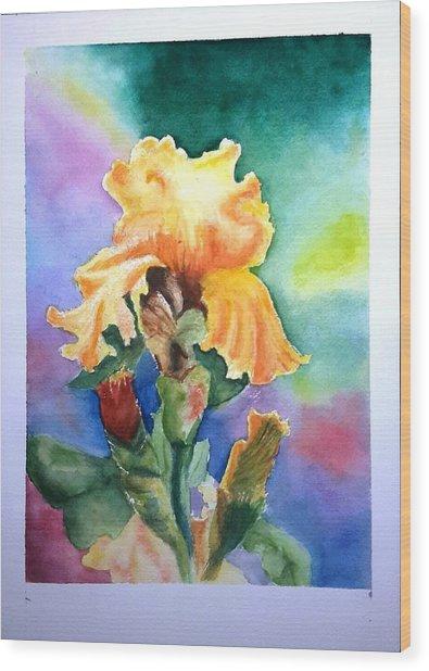 Iris Sold Wood Print