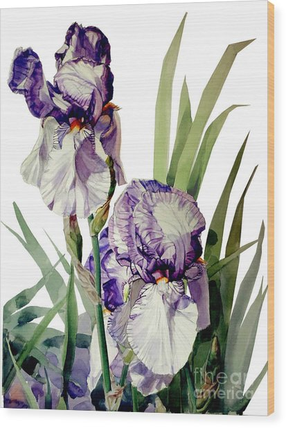 Watercolor Of A Tall Bearded Iris In Violet And White I Call Iris Selena Marie Wood Print