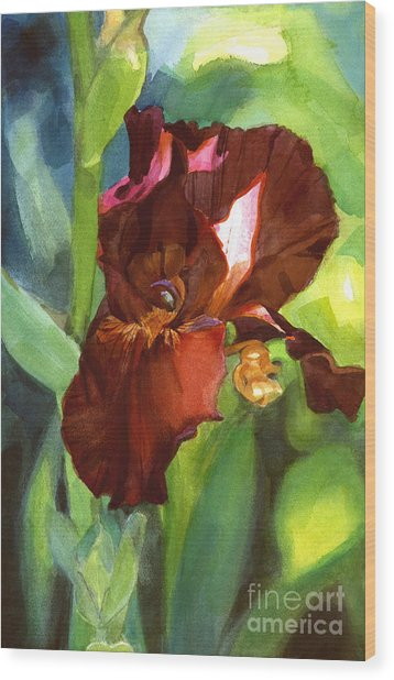 Watercolor Of A Tall Bearded Iris In Sienna Red Wood Print
