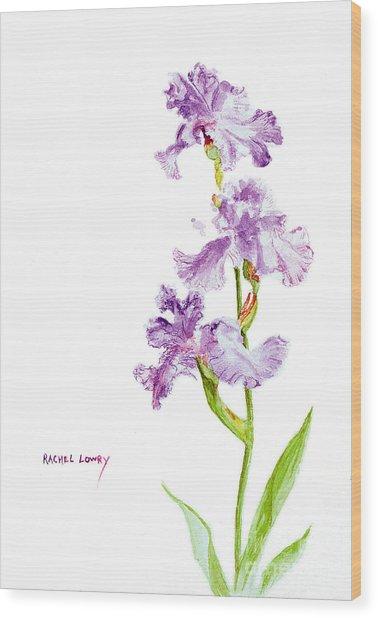 Iris Trio Wood Print
