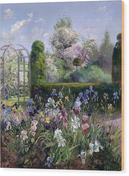 Irises In The Formal Gardens, 1993 Wood Print