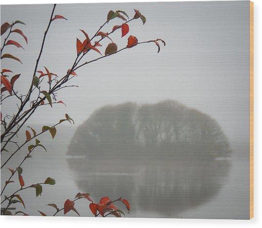 Irish Crannog In The Mist Wood Print