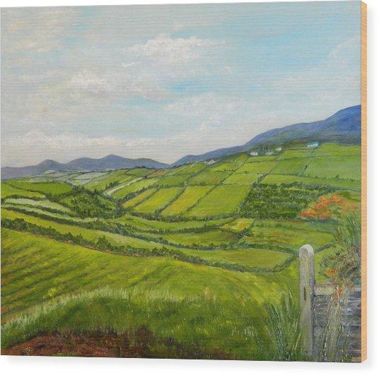 Irish Fields - Landscape Wood Print