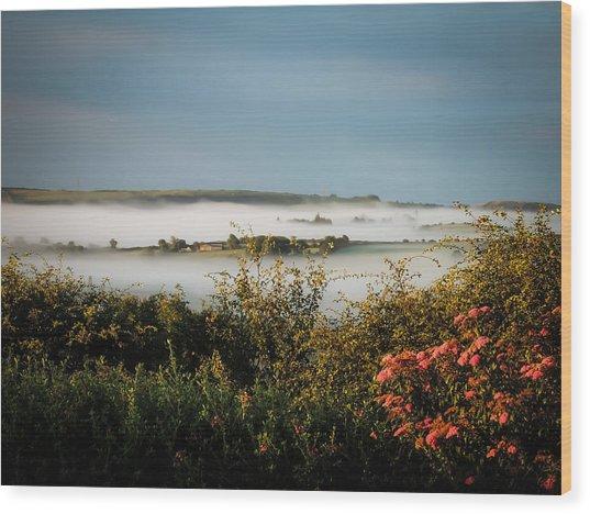 Irish Mist Over Lissycasey Wood Print