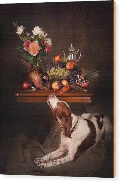 Irish Red And White Setter With Fruits... Wood Print by Tanya Kozlovsky