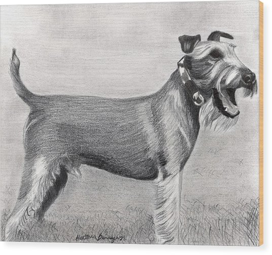 Irish Terrier Dog Portrait Wood Print by Olde Time  Mercantile