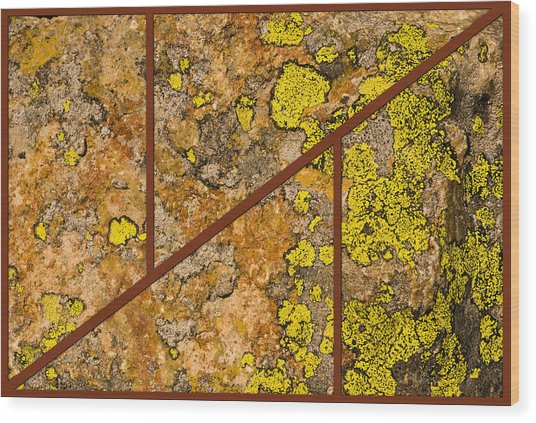 Iron And Lichen Wood Print