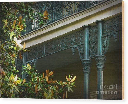 Iron Detail With Magnolia Tree Wood Print