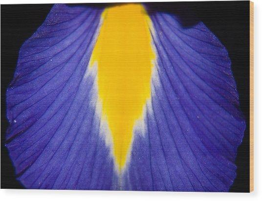 Irresistible Iris Wood Print