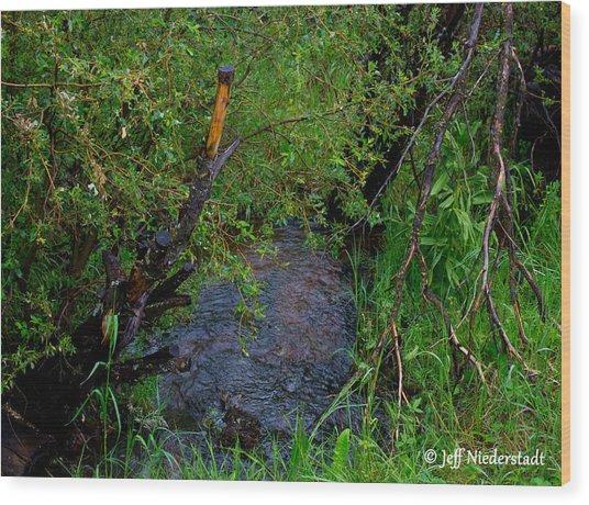 Isabel Creek Wood Print