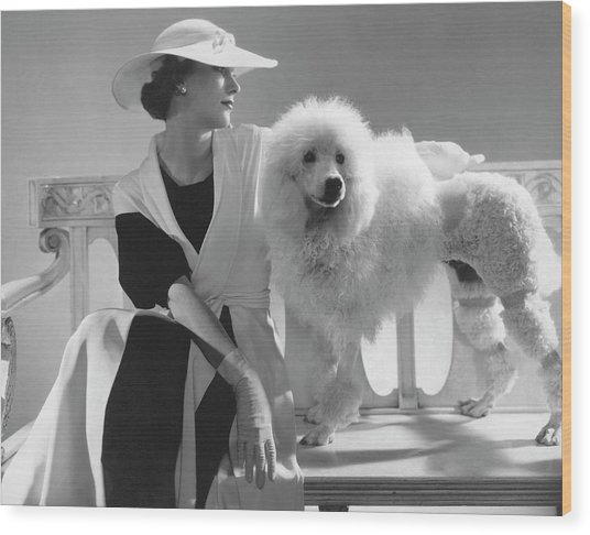Isabel Johnson With A Poodle Wood Print by Edward Steichen