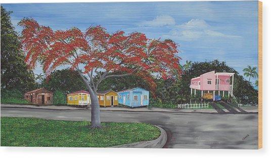 Isabela Puerto Rico Wood Print