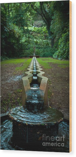 Island Fountain Wood Print