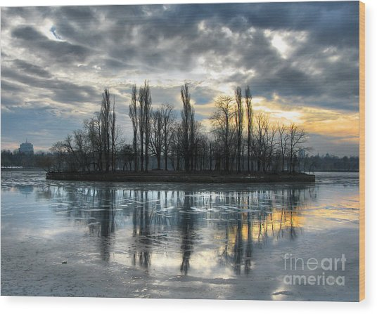 Island In Winter - Reflection Wood Print