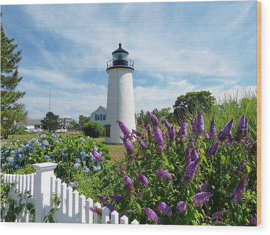 Island Light Wood Print by Elaine Franklin