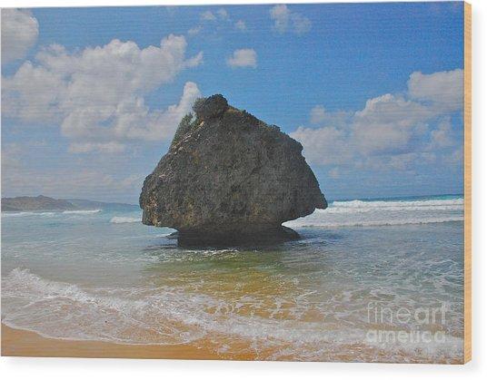 Island Rock Wood Print