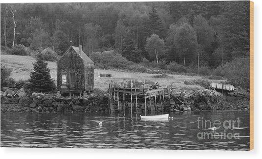 Island Shoreline In Black And White Wood Print