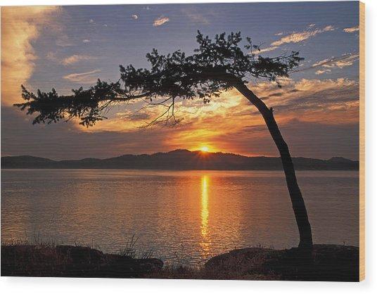 Island Sunrise Wood Print