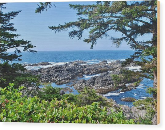 Island View Wood Print