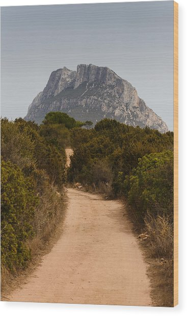 Isola Di Tavolara Wood Print by Paul Indigo