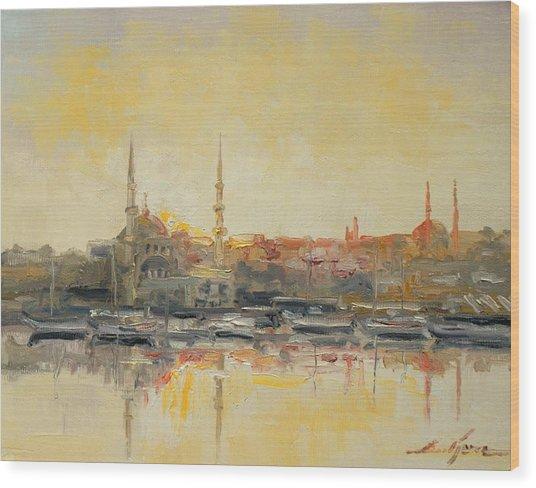 Istanbul- Hagia Sophia Wood Print
