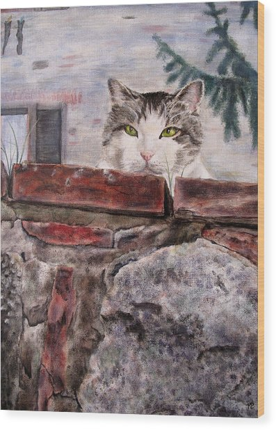 Italian Cat Wood Print by Karen Peterson