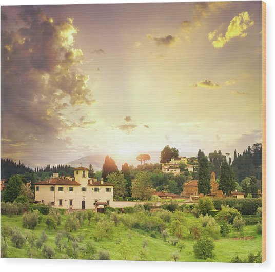 Italian  Landscape Wood Print by Dtokar