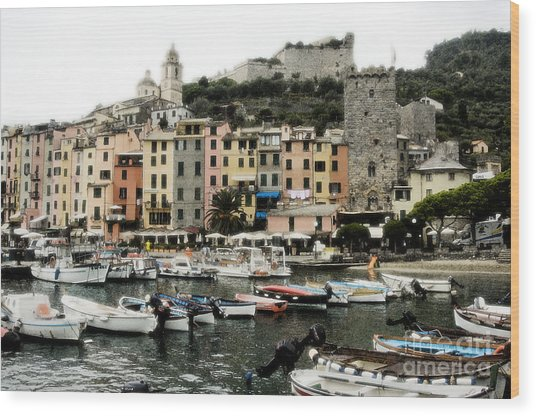 Italian Seaside Village Wood Print by Jim  Calarese