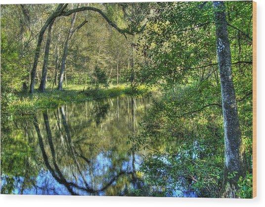Itchetucknee Springs 03 Wood Print