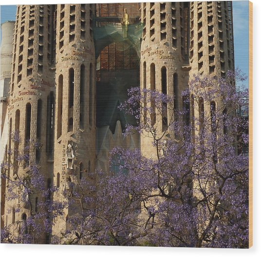 Jacaranda In Barcelona Wood Print by Christine Burdine