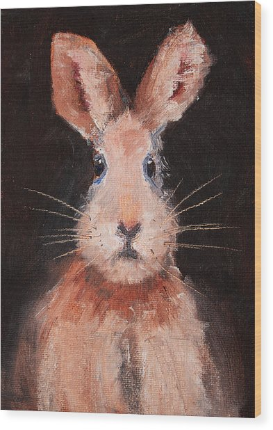 Jack Rabbit Wood Print