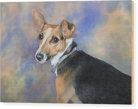 Jack Russell Wood Print by Anthony Forster