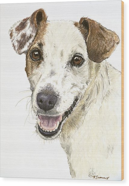 Jack Russell Terrier Portrait Wood Print