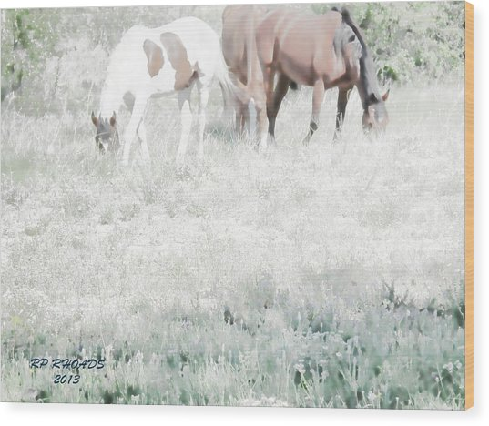Jack Smokey And Camelot Texas Spring C Wood Print