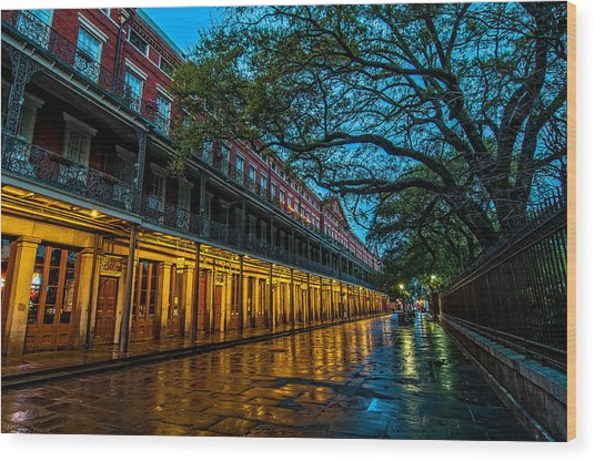 Jackson Square At Dawn Wood Print
